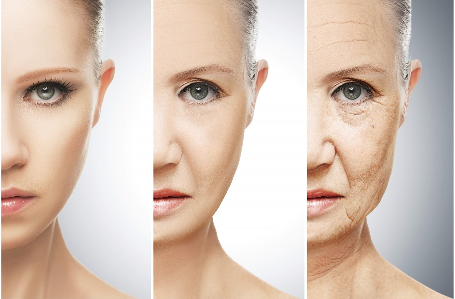 collagen là gì? và tác dụng của collagen. Hera organic365